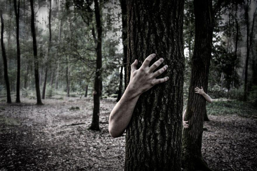 scariest campfire stories   ActionHub