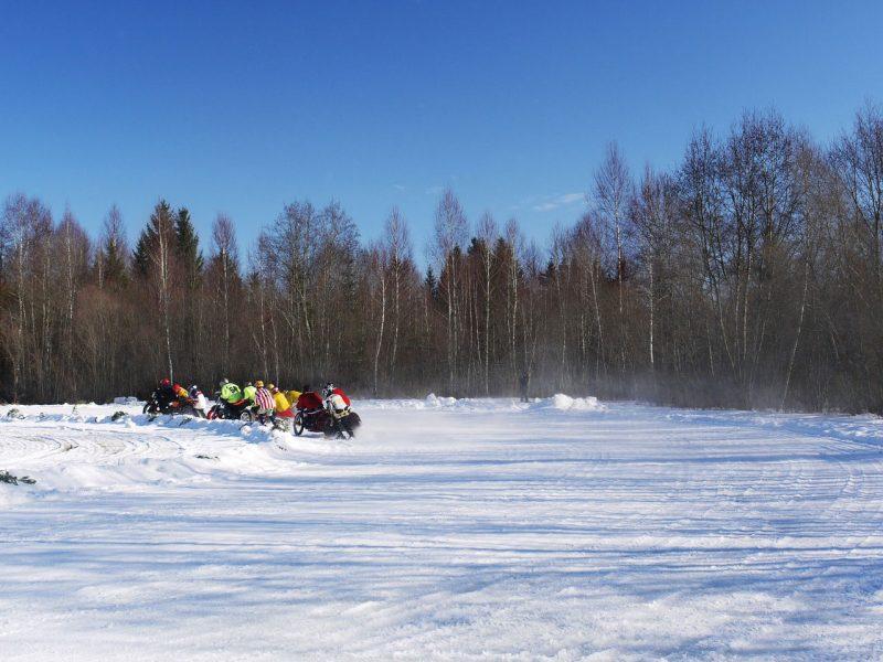 Unusual Winter Sports   ActionHub