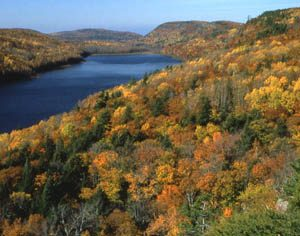 5 Michigan Trails that Lead to Autumn Gold | ActionHub