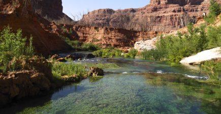 Hike along Havasu Creek to the Colorado River | ActionHub