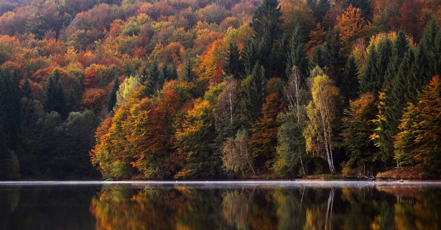 Best places to see fall colors in the U.S.   ActionHub
