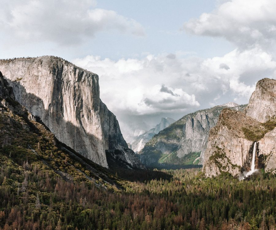 Thousands sign petition opposing new Starbucks at Yosemite | ActionHub