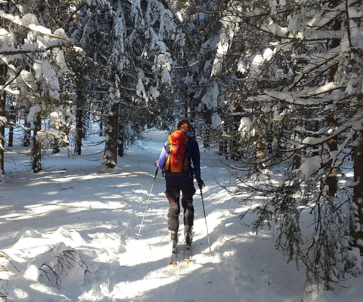 Top reasons to try out backcountry skiing   ActionHub