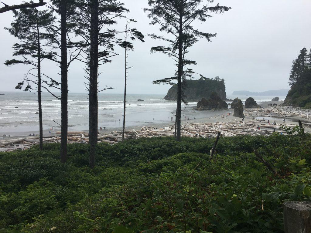 Ruby Beach 4