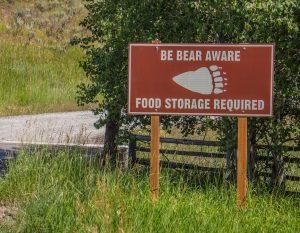 best-bear-canister