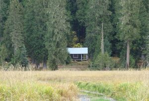 forest-service-cabin-hughes-point-idaho