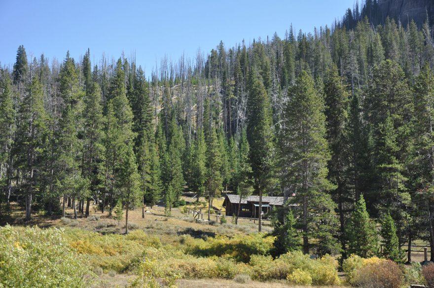 forest-service-cabin-wyoming-SashaFenix
