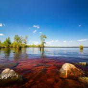great-dismal-swamp-kayak