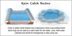 ILLUST-RAIN CATCH WATER BASINS-Tom Watson
