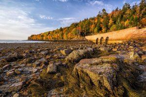 acadia-national-park-fall-color