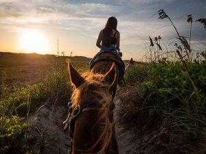 Horseback-riding-san-padre-island