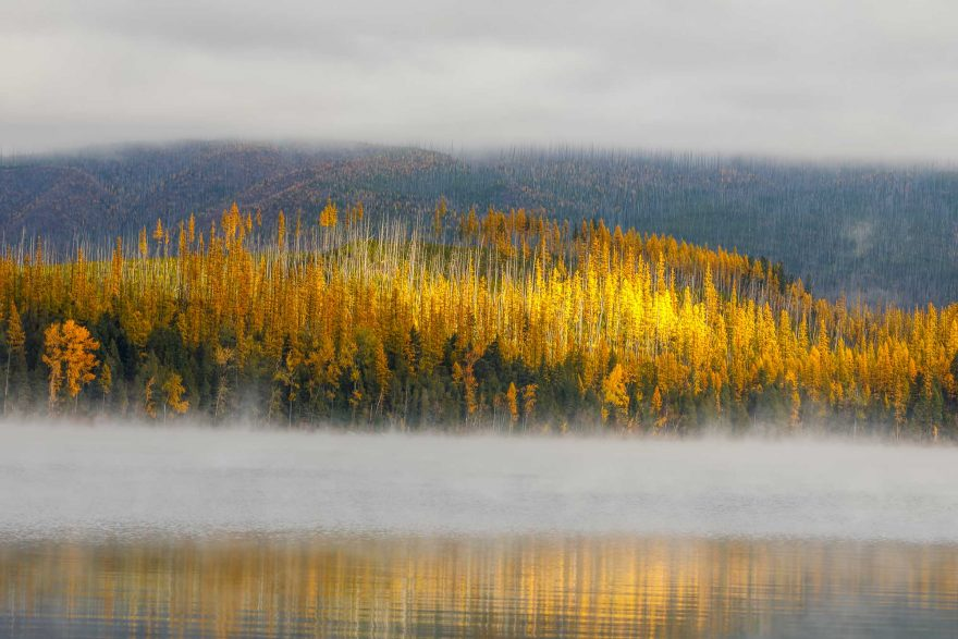 glacier-national-park-fog-fall-color